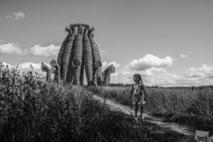 Уникальная выставка лучших фотографий России откроется в Перми
