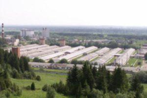 Антимонопольный комитет заставляет Минимущество Прикамья переоценить акции «Пермского свинокомплекса»