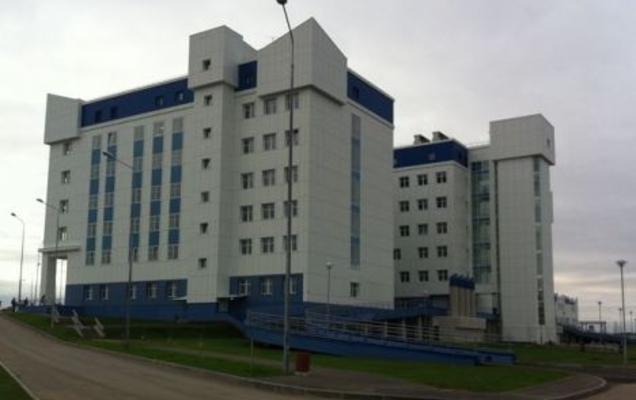 Пермский краевой перинатальный центр отметил своё пятилетие