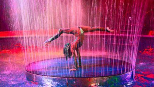 Цирк на воде в Перми