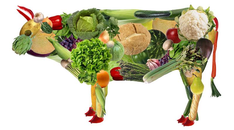 Вегетарианцы Перми призывают всех на один день отказаться от мяса