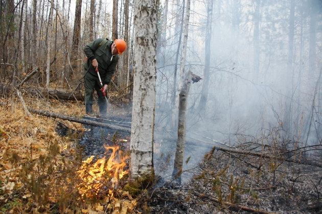 Учёные ПГНИУ разработали противопожарную мину
