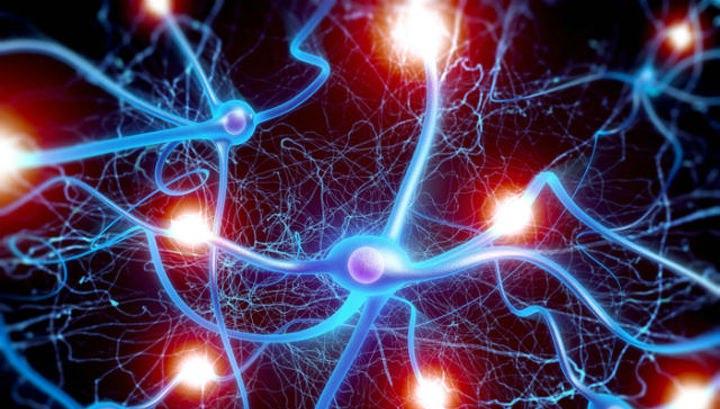 Пермячка создала уникальную нейросетевую систему