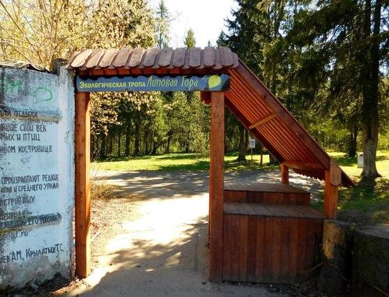 В Перми открылась лесная библиотека