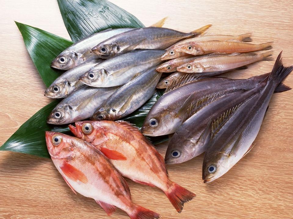 В Прикамье перераспределяют полномочия по надзору за рыболовством
