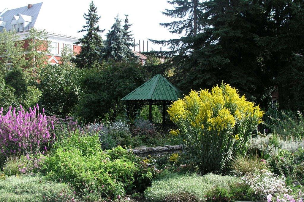 В ботаническом саду пострадало 2,5 тысячи видов растений