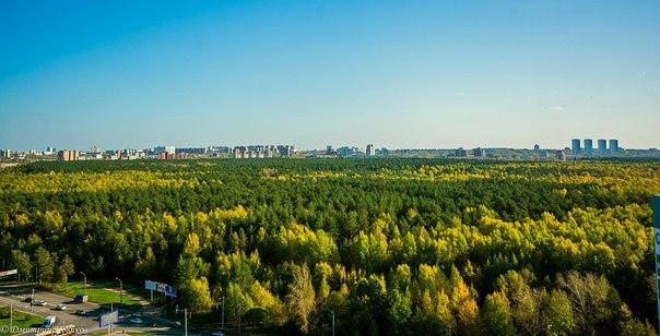 В Перми появится много новых скверов