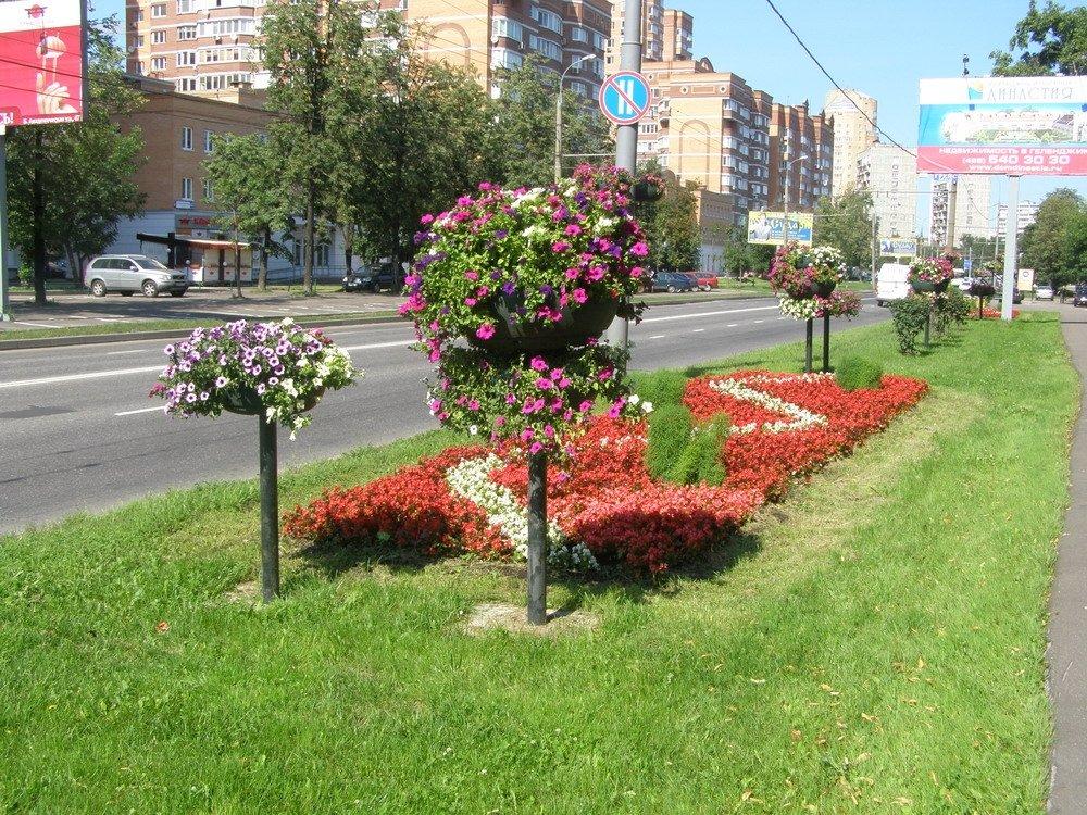 Пермякам предлагают поучаствовать в выборе мест для озеленения