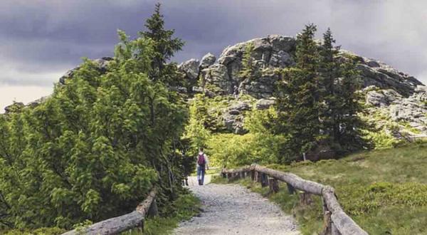 На базе природного парка «Пермский» объединятся региональные природные территории