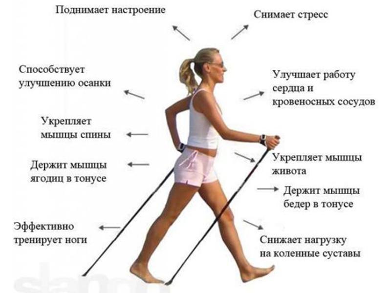 «Зелёные версты Перми» стартуют в Парке Горького