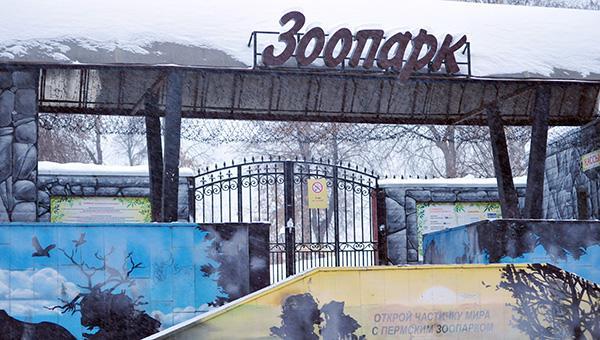 Конкурс по созданию проекта второй очереди пермского зоопарка отложен на месяц