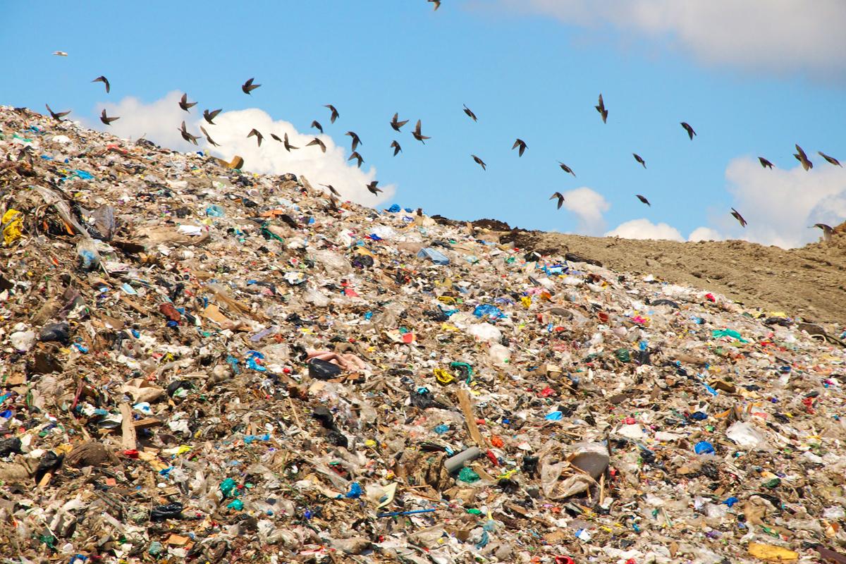 В Перми будет меняться «мусорная» концепция