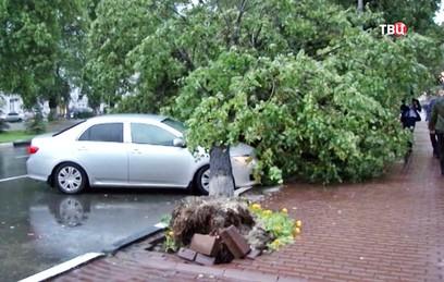 В Перми устраняют последствия стихии