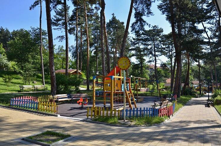 В Прикамье обустроят парк «Сосновый бор»