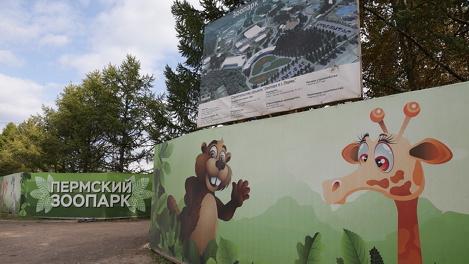Концепция по оформлению зоопарка Перми обойдётся в 150 тысяч евро