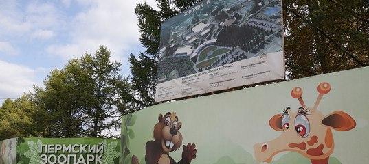 Со строительством пермского зоопарка опять проблемы