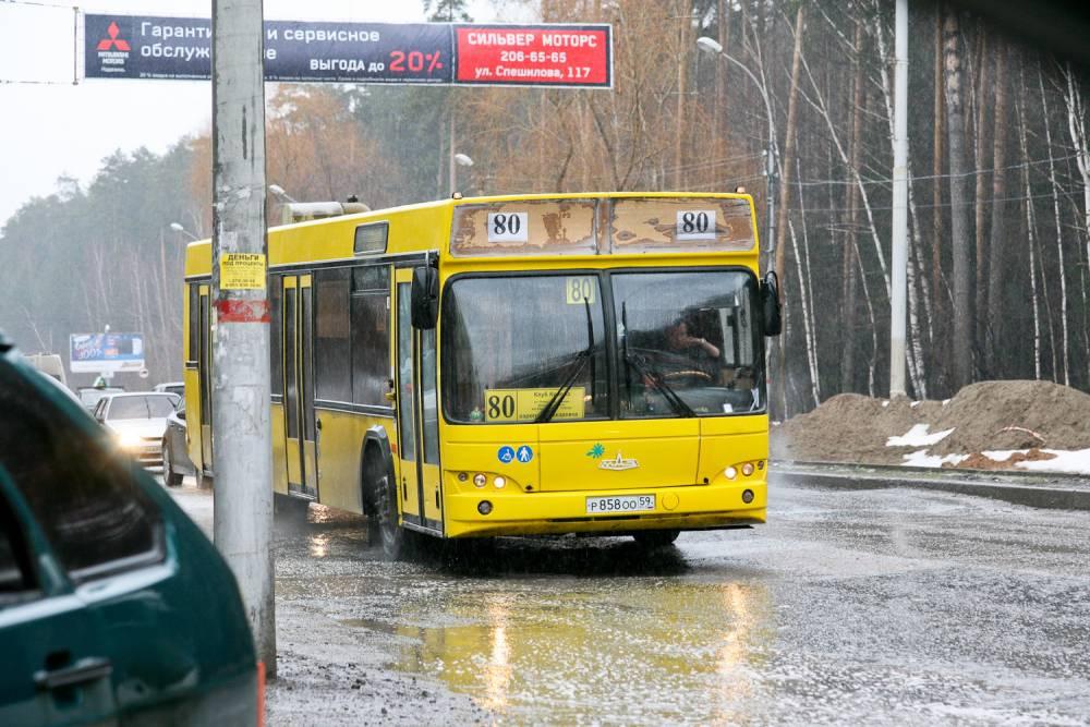 Новая маршрутная сеть появится в Перми