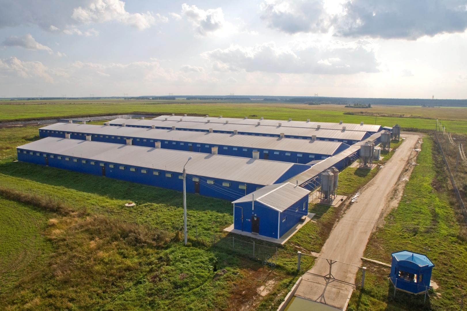 Прикамские власти предлагают федеральным агрохолдингам сотрудничество