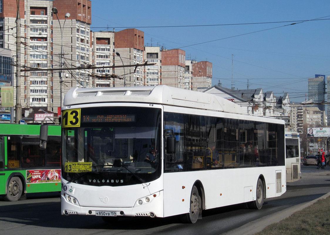 Автобусы Volgabus прибыли в Пермь