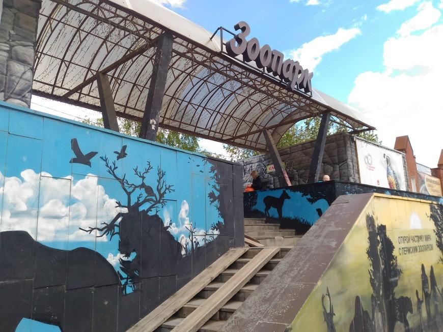 Кафе с прозрачными стенами появится в пермском зоопарке