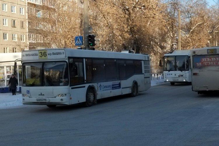 Два автобусных маршрута выставят на аукцион