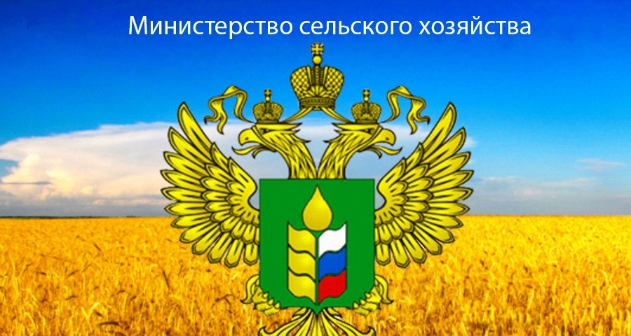В Прикамье назначен новый глава Минсельхоза