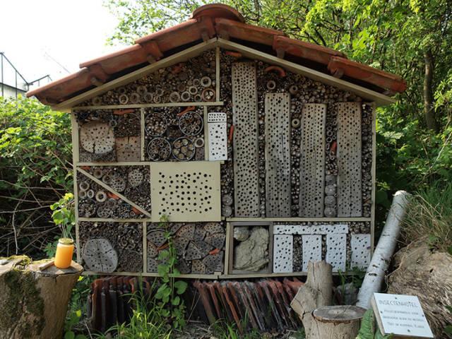 Отель для насекомых украсит набережную Перми