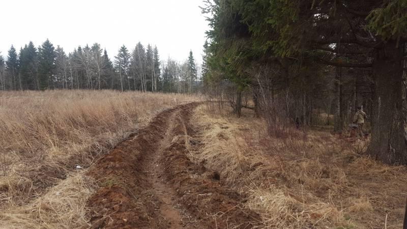 В Перми опахали леса