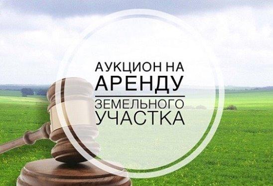 В Перми состоятся аукционы на аренду земельных участков