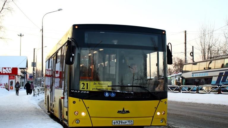 Сформированы аукционные заявки на 31 автобусный маршрут Перми