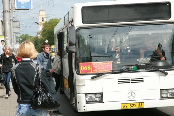 В Перми распределили автобусные маршруты