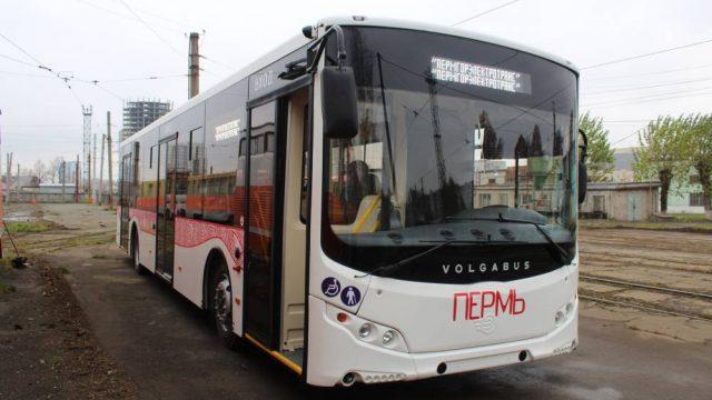 В Перми появятся новые низкопольные автобусы