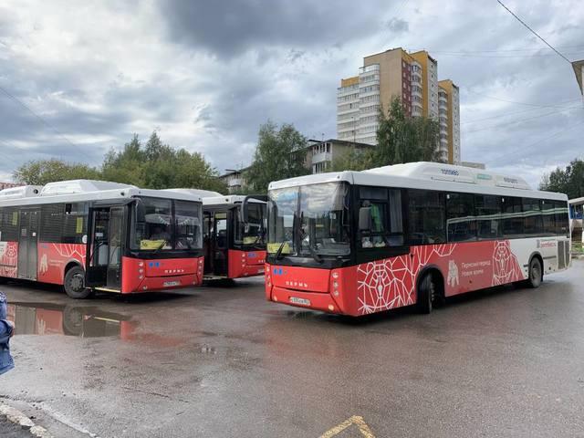 Пермское министерство закупит два автобуса за пять миллионов рублей