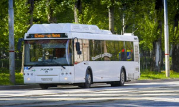 Свыше двухсот новых автобусов вышли на маршруты в Перми