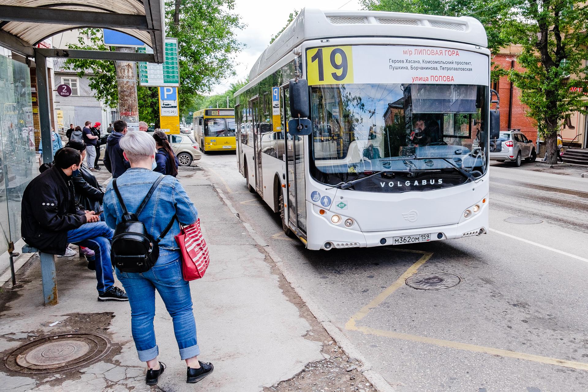 В пермской мэрии объявили конкурс на обслуживание автобусных маршрутов