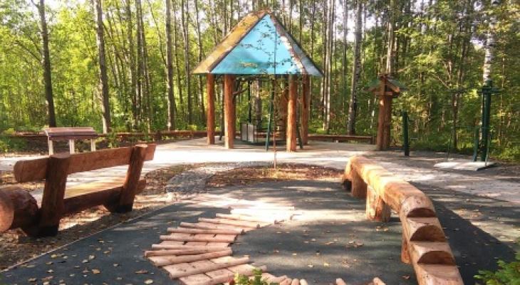В Черняевском лесу обустроят рекреационную зону