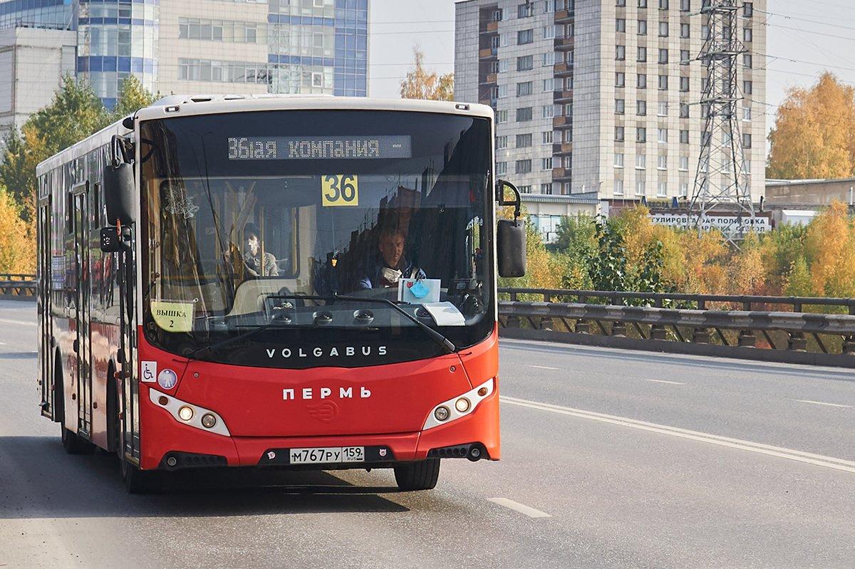 В обзоре ВЭБ.РФ Пермь вывели в лидеры по развитию общественного транспорта