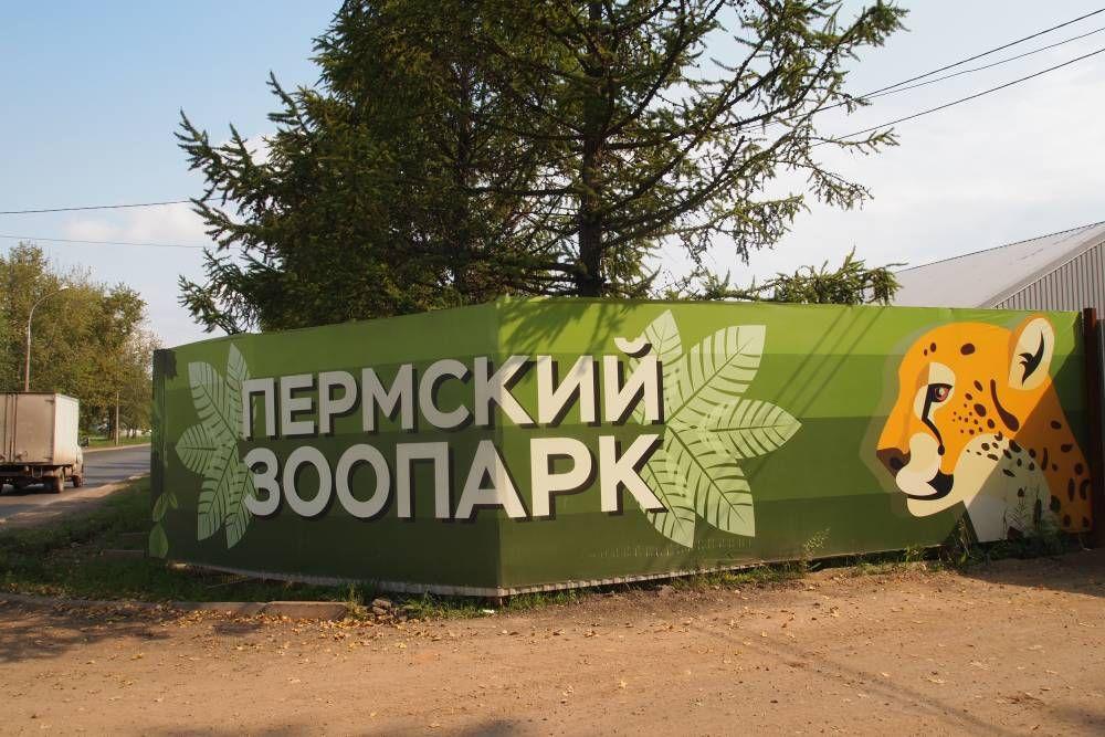 Мировое соглашение по новому пермскому зоопарку достигнуто не было