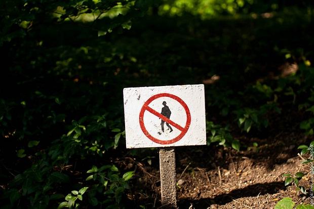 Прикамцам временно запретили находиться в лесах