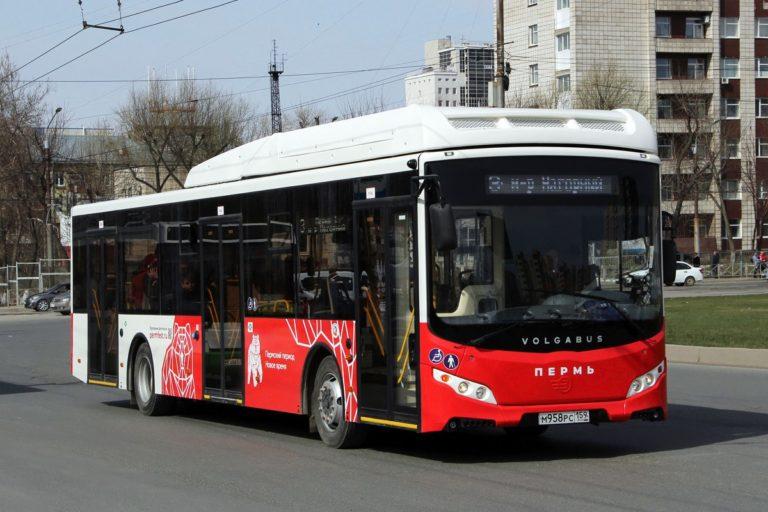 В Перми провели опрос горожан по тарифному транспортному меню
