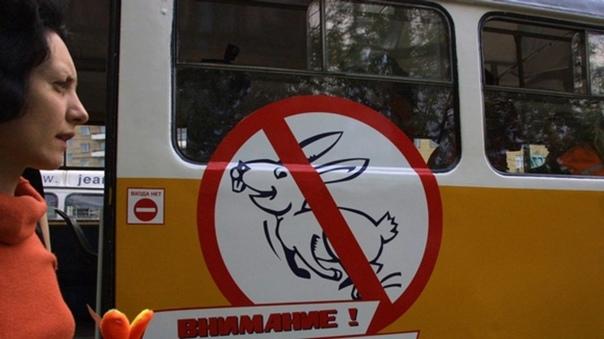 В пермском транспорте с бескондукторной оплатой будут штрафовать «зайцев»